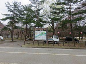 桜の状況と5月のユースポ!情報
